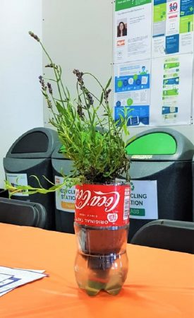 IMG-20190815-WA0006 – 2 Gresham Street – Plant in Reused Plastic Bottle – Formatted – Cropped – 1200px